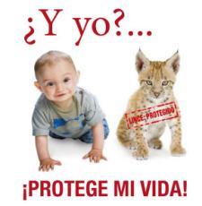 Cartel de la campaña de la iglesia católica española contra la nueva ley del aborto