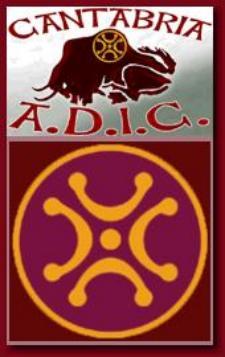 Logo de ADIC