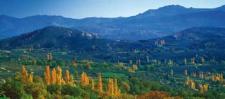 Valle del Alberche (foto de José Luis Rodríguez)