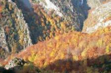 Las Cabriteras en otoño (foto de José Luis Rodríguez)