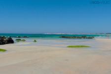 Parque Natural de las Dunas de Corrubedo - Playa do Castro (foto propiedad de Eco-Viajes)
