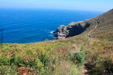 Punta Cueva Colina - Observatorio de Aves y Cetáceos (foto propiedad de Eco-Viajes)
